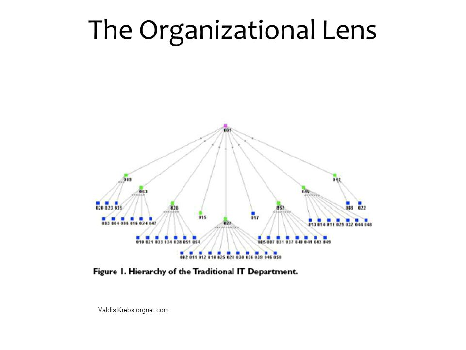 The Organizational Lens