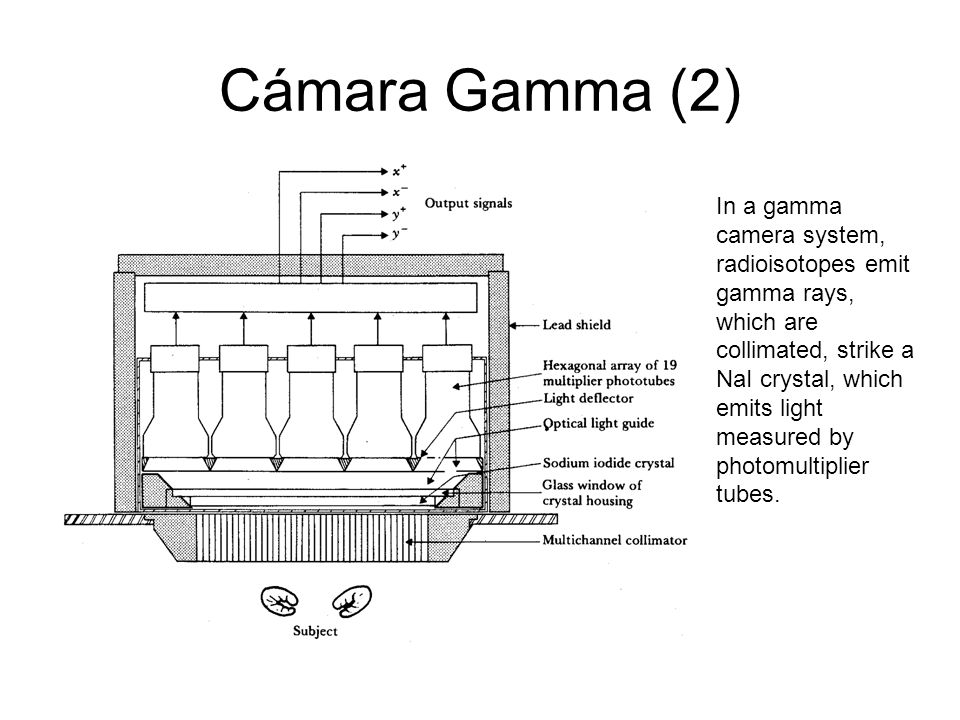 Cámara Gamma (2)