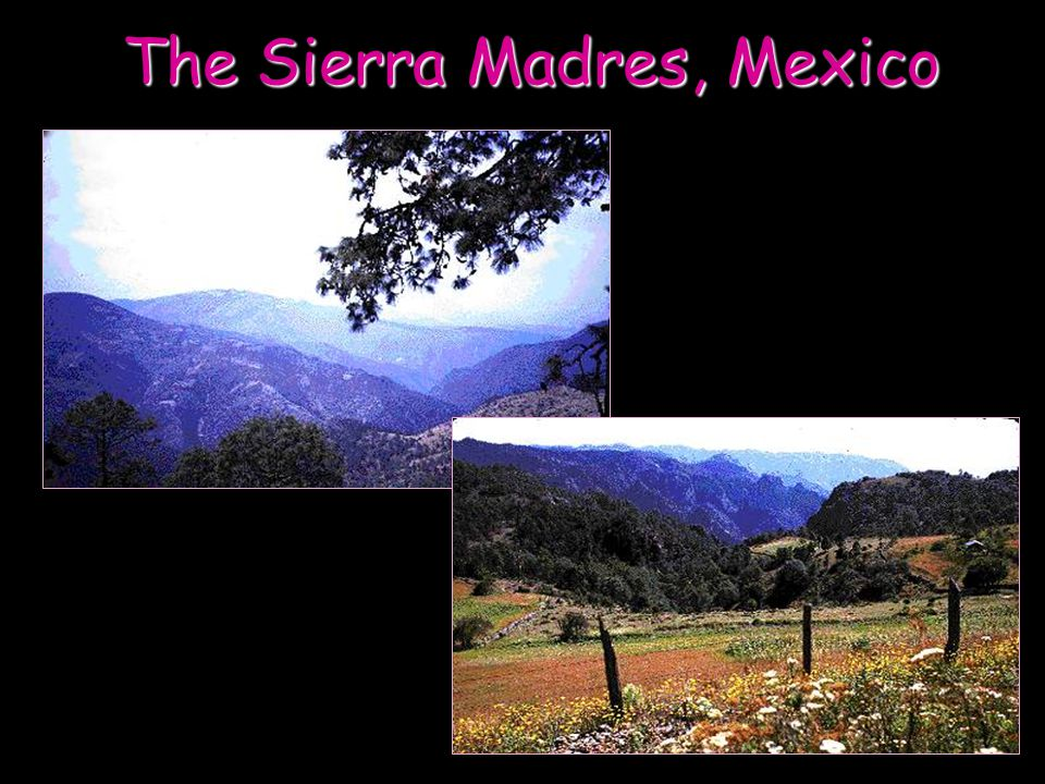 The Sierra Madres, Mexico
