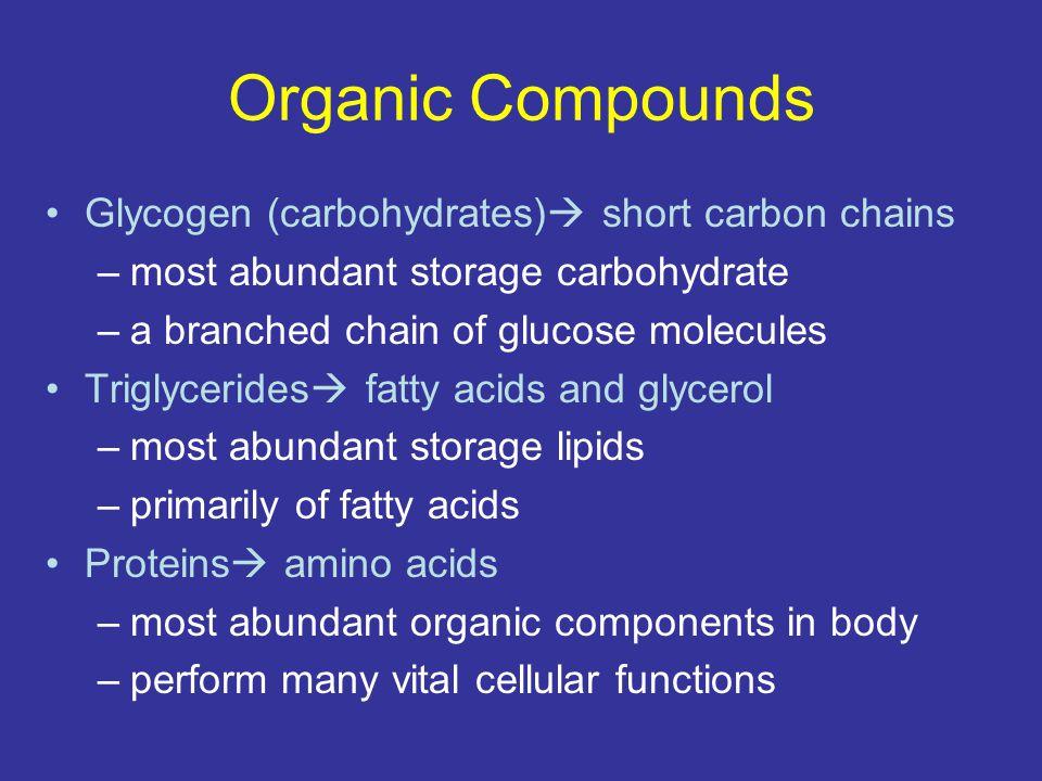 Organic Compounds Glycogen (carbohydrates) short carbon chains