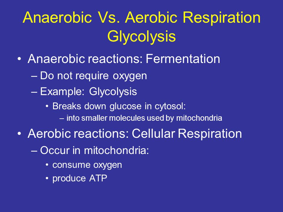 Anaerobic Vs. Aerobic Respiration Glycolysis