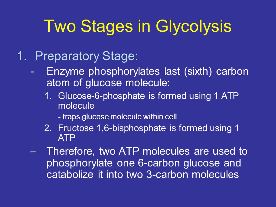 Two Stages in Glycolysis