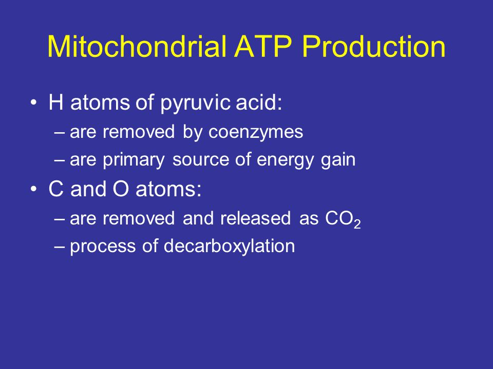 Mitochondrial ATP Production
