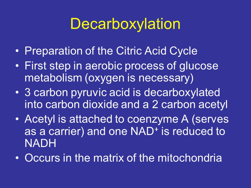 Decarboxylation Preparation of the Citric Acid Cycle