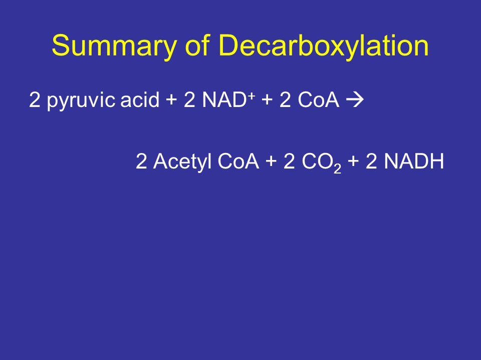 Summary of Decarboxylation