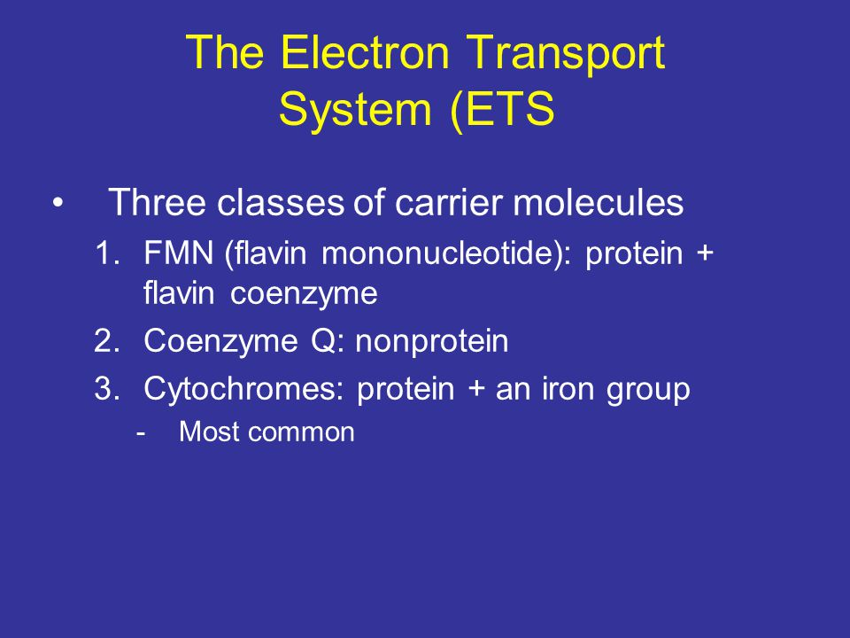 The Electron Transport System (ETS)