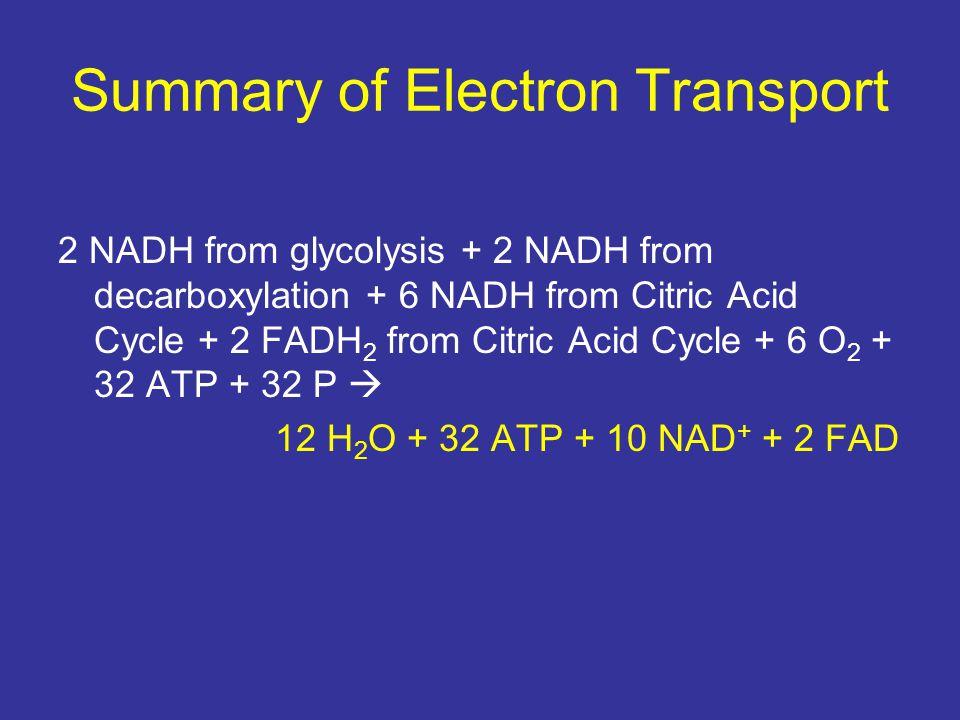 Summary of Electron Transport