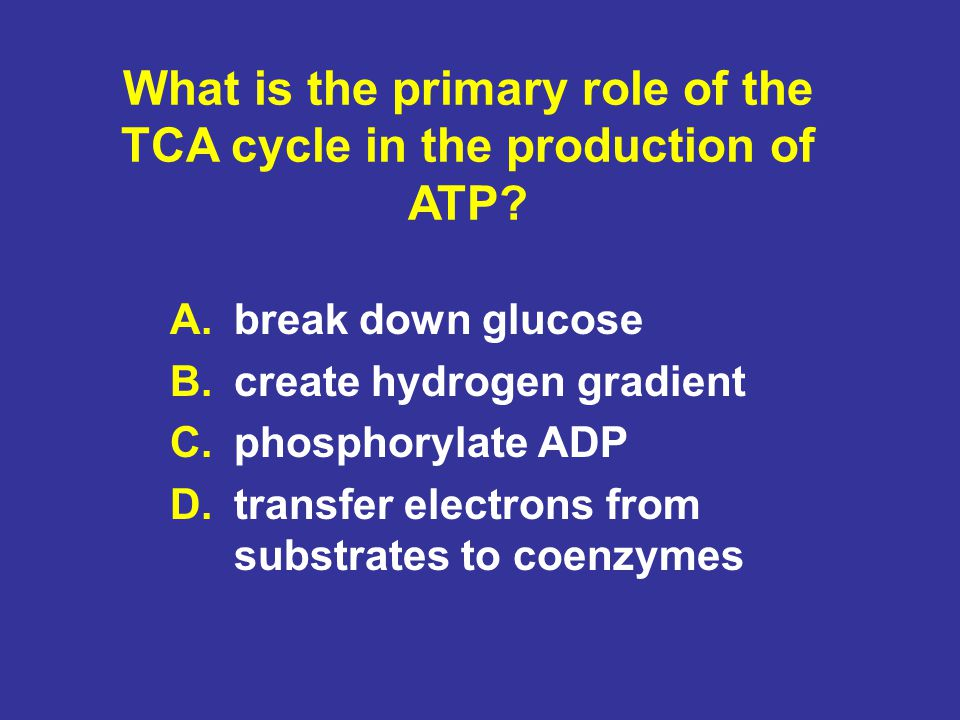 What is the primary role of the TCA cycle in the production of ATP