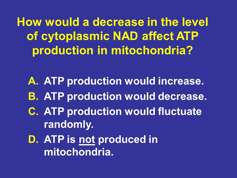 How would a decrease in the level of cytoplasmic NAD affect ATP production in mitochondria