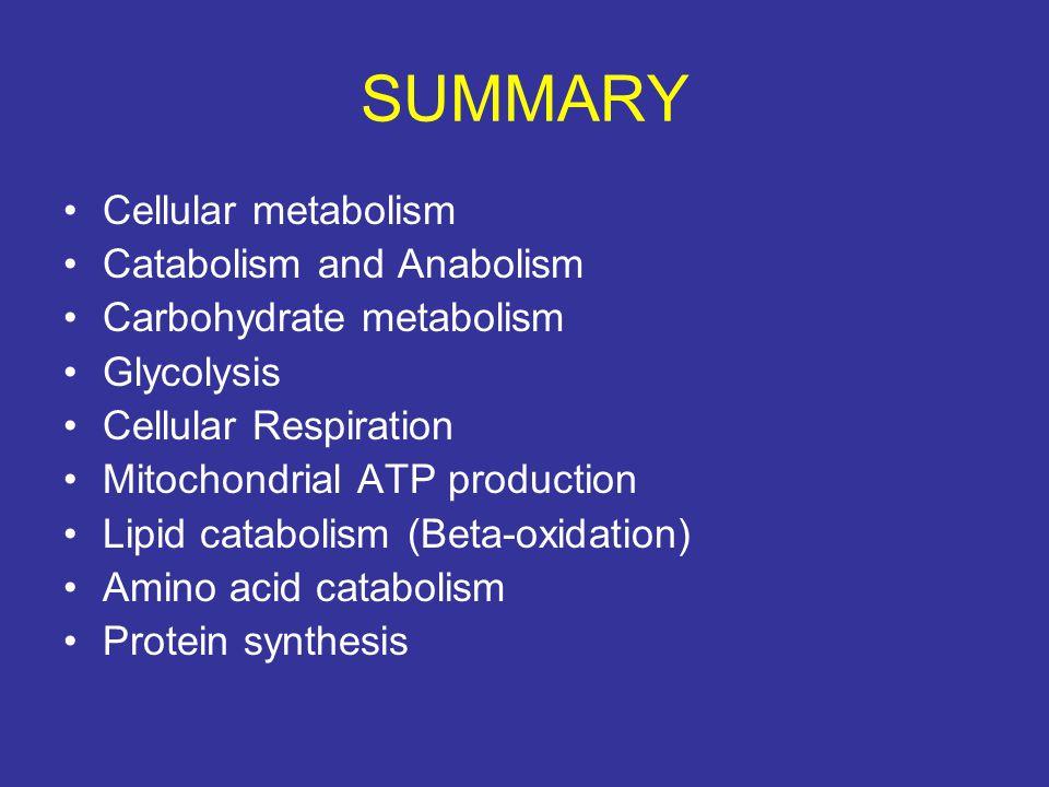 SUMMARY Cellular metabolism Catabolism and Anabolism