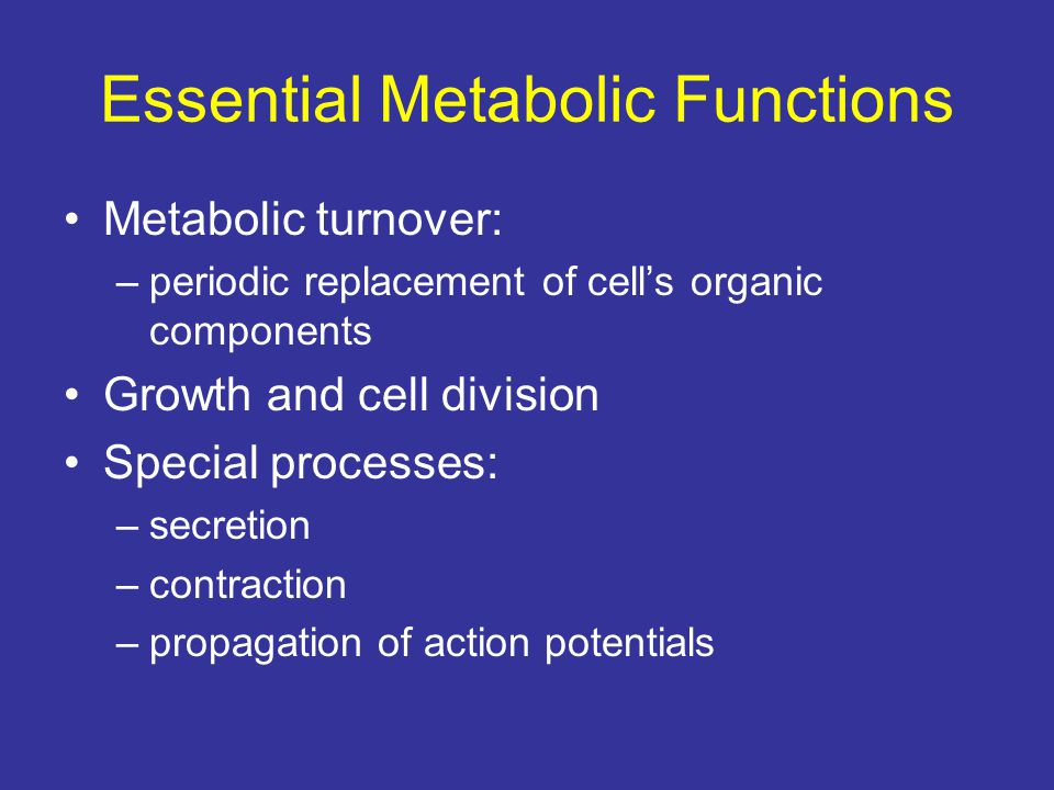Essential Metabolic Functions