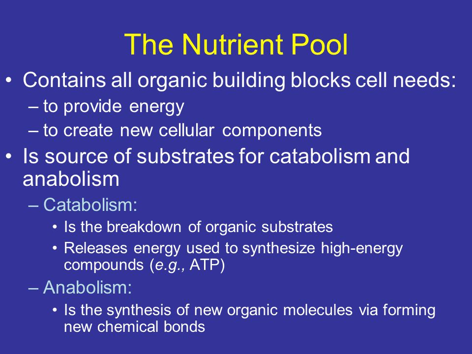 The Nutrient Pool Contains all organic building blocks cell needs: