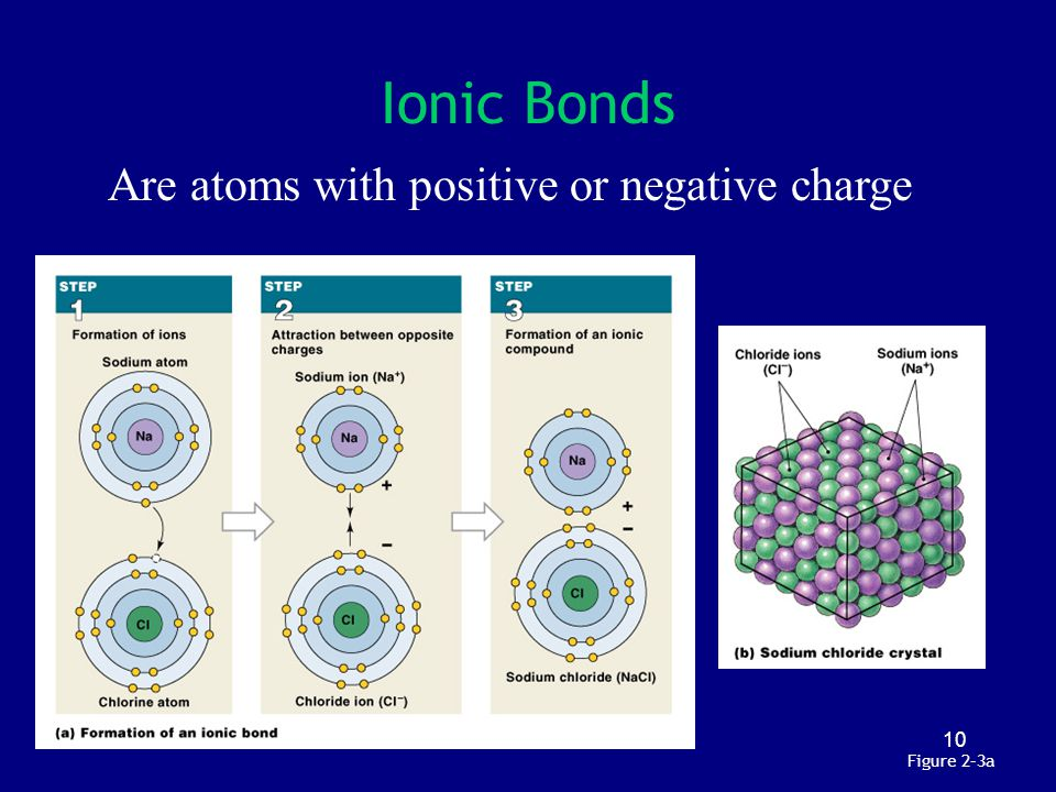 Ionic Bonds Are atoms with positive or negative charge Figure 2–3a