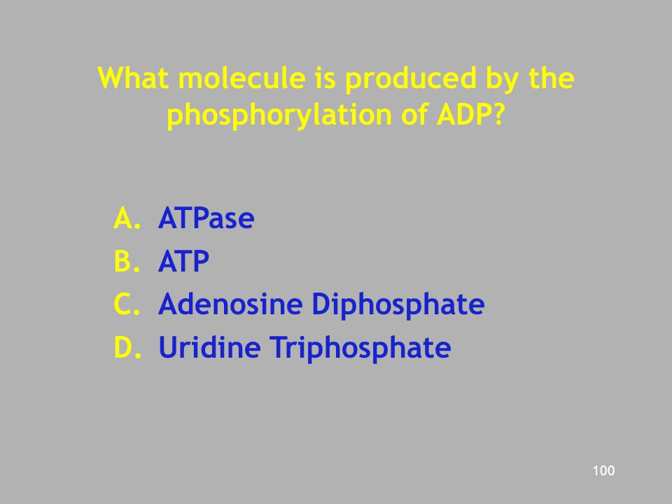 What molecule is produced by the phosphorylation of ADP