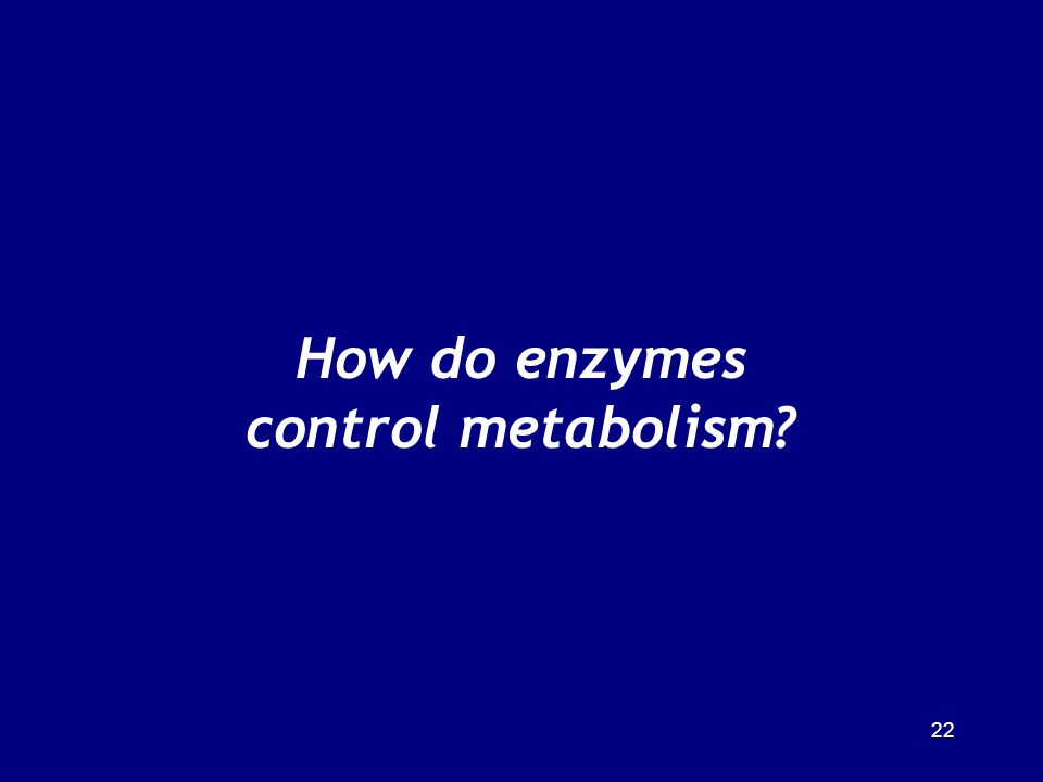 How do enzymes control metabolism