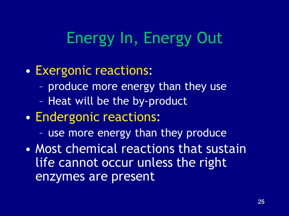 Energy In, Energy Out Exergonic reactions: Endergonic reactions: