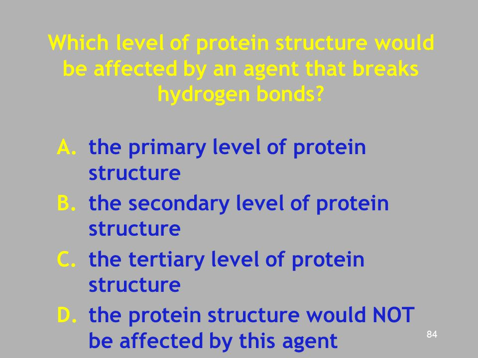 Which level of protein structure would be affected by an agent that breaks hydrogen bonds