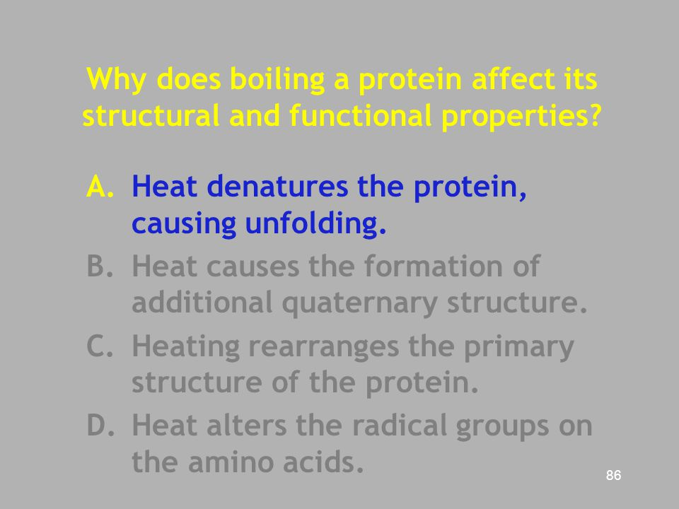 Why does boiling a protein affect its structural and functional properties