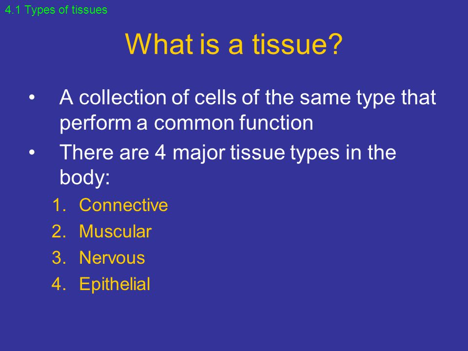 4.1 Types of tissues What is a tissue A collection of cells of the same type that perform a common function.