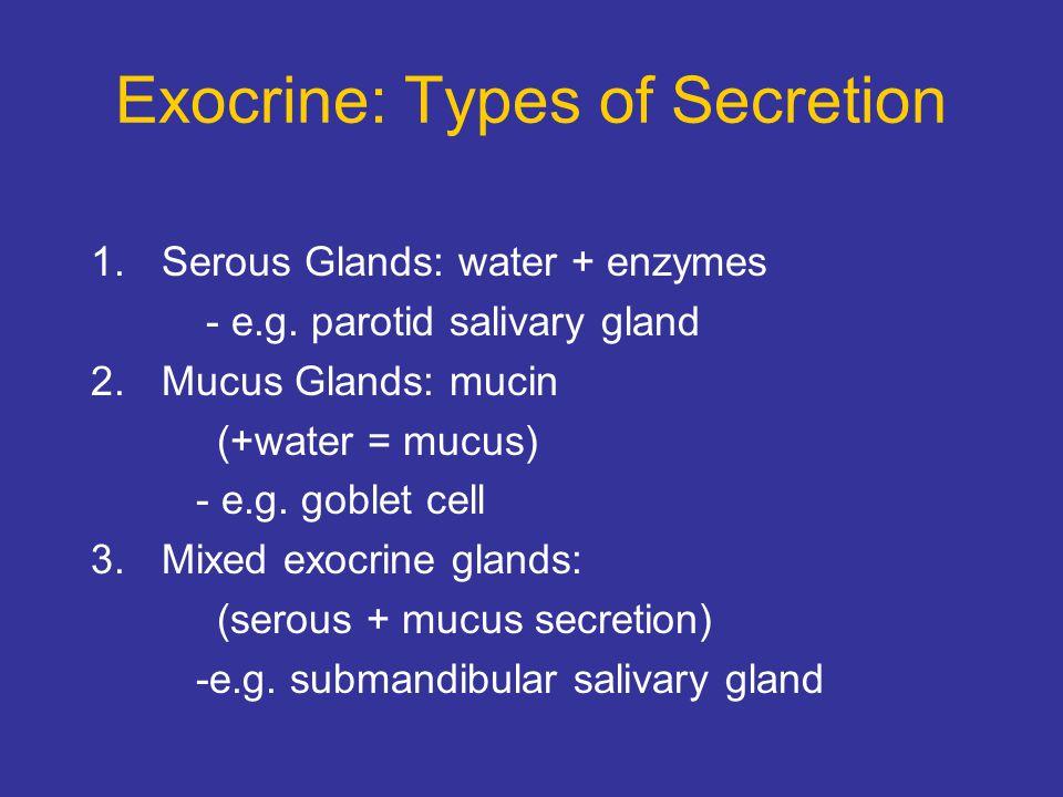 Exocrine: Types of Secretion