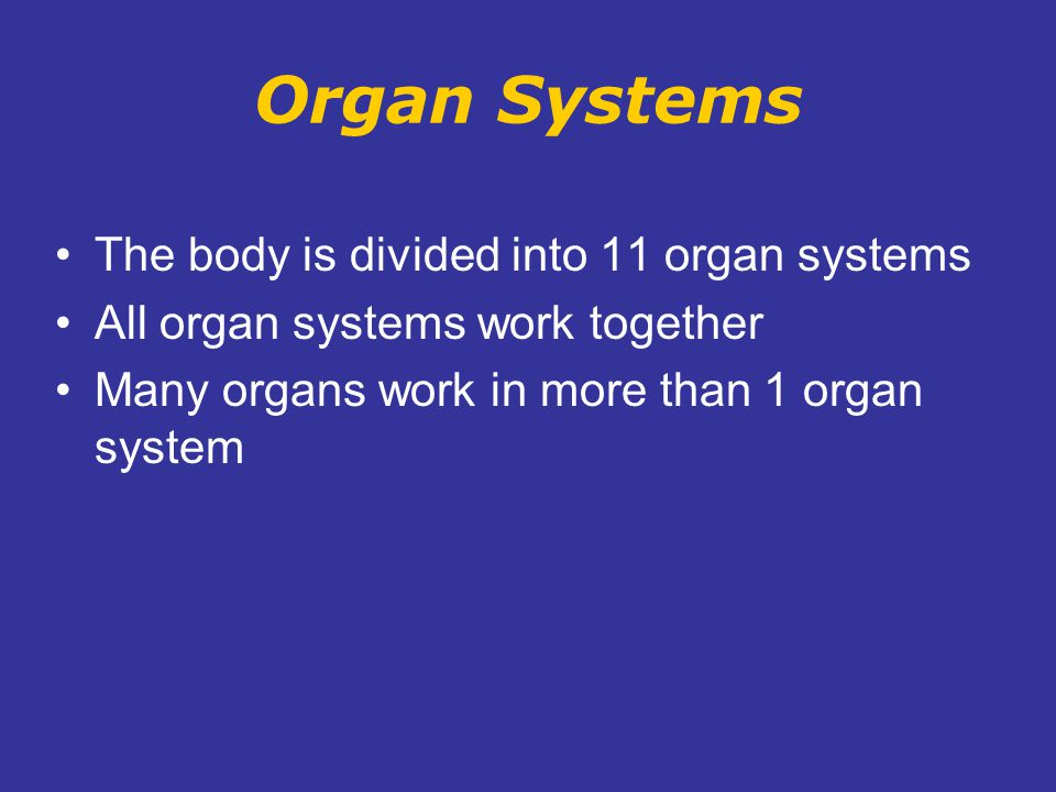 Organ Systems The body is divided into 11 organ systems