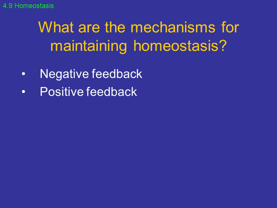 What are the mechanisms for maintaining homeostasis
