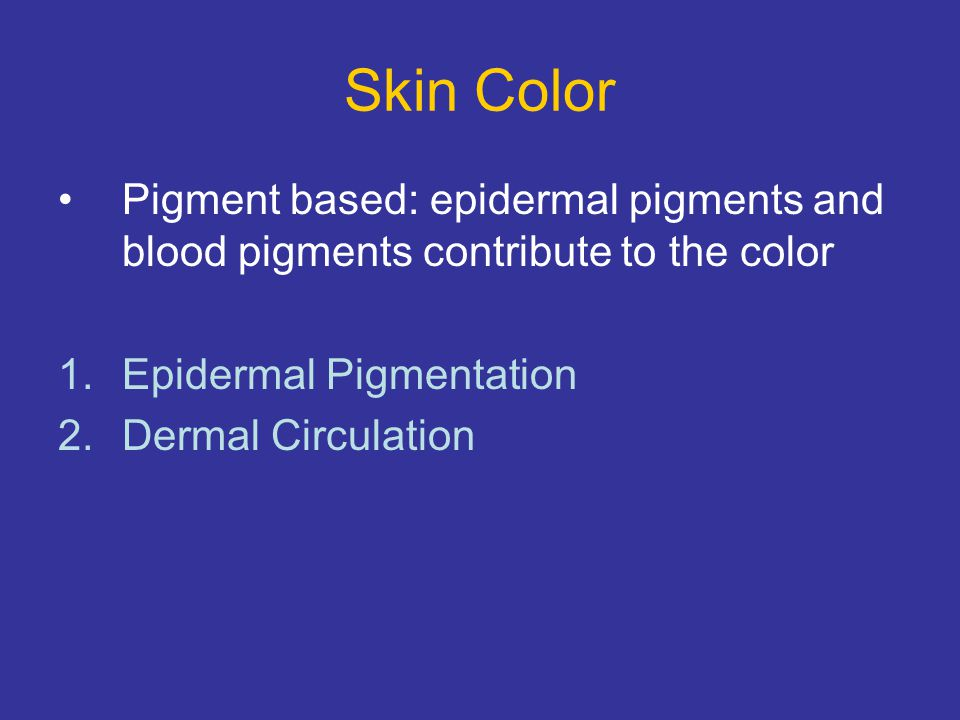 Skin Color Pigment based: epidermal pigments and blood pigments contribute to the color. Epidermal Pigmentation.