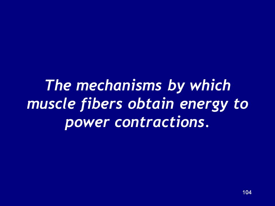 The mechanisms by which muscle fibers obtain energy to power contractions.