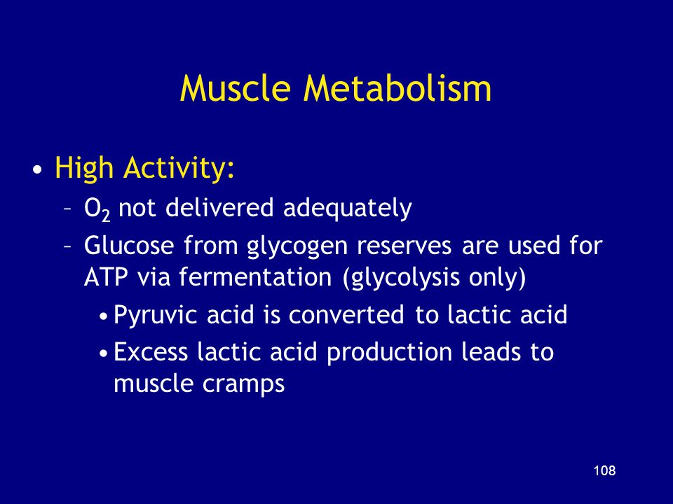 Muscle Metabolism High Activity: O2 not delivered adequately