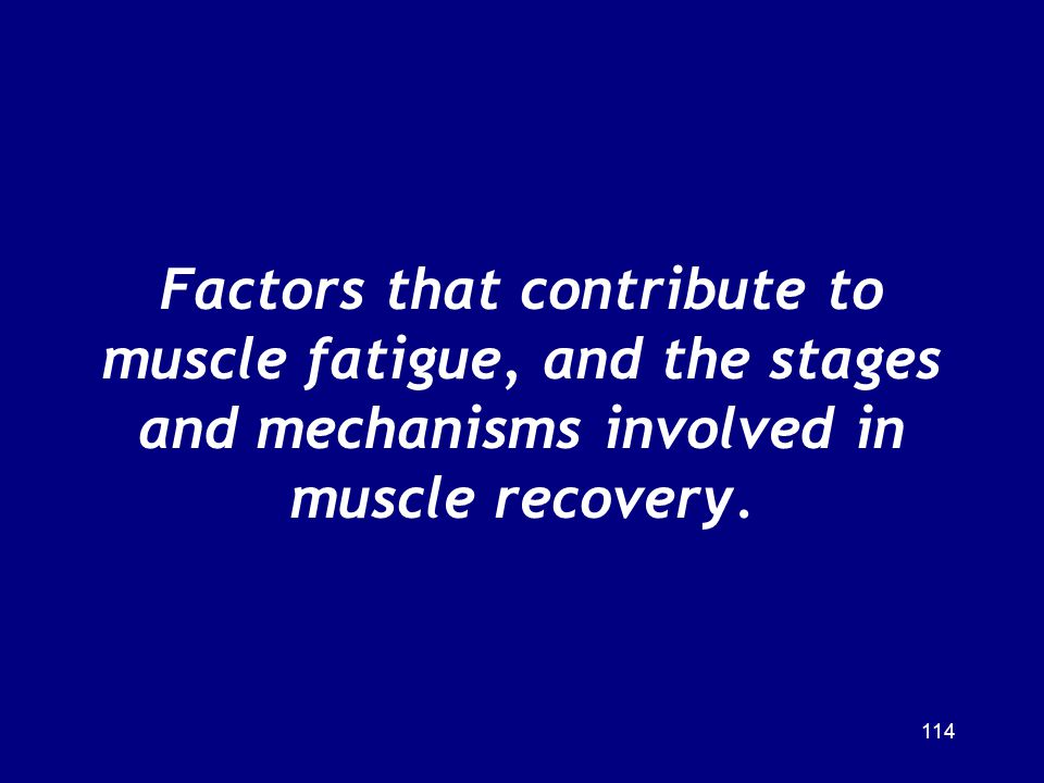 Factors that contribute to muscle fatigue, and the stages and mechanisms involved in muscle recovery.