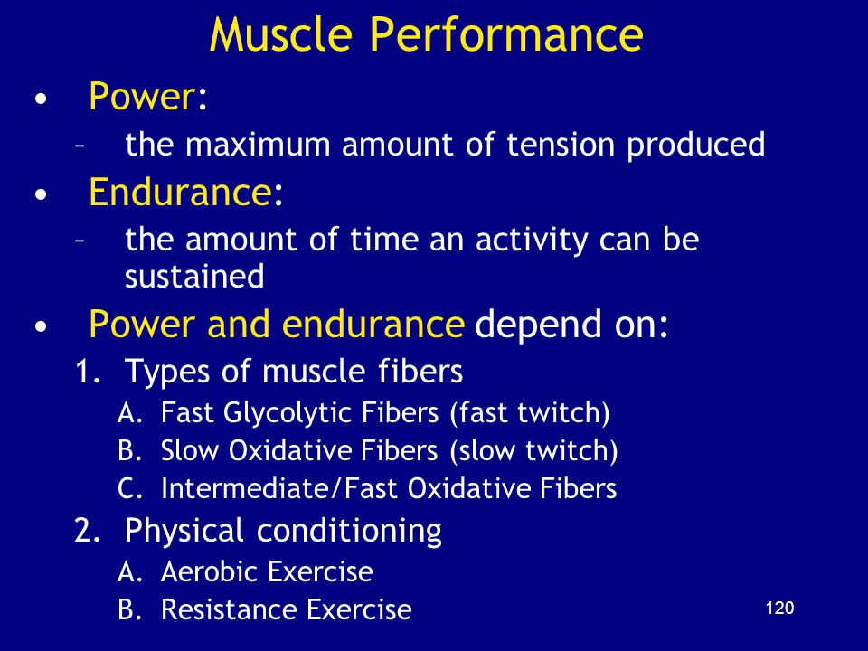 Muscle Performance Power: Endurance: Power and endurance depend on: