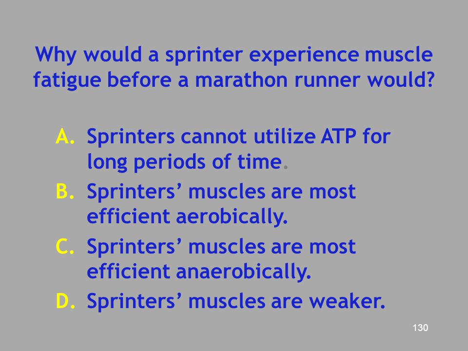 Why would a sprinter experience muscle fatigue before a marathon runner would