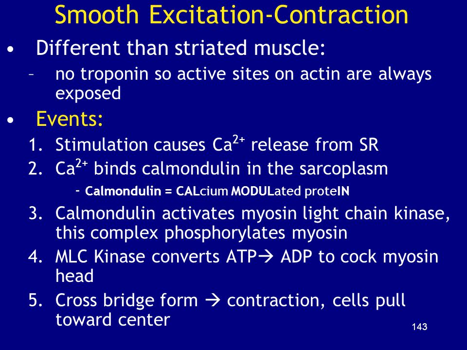 Smooth Excitation-Contraction