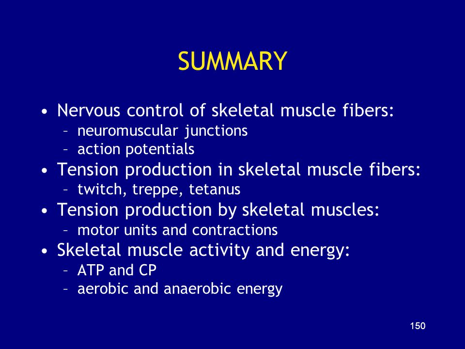 SUMMARY Nervous control of skeletal muscle fibers: