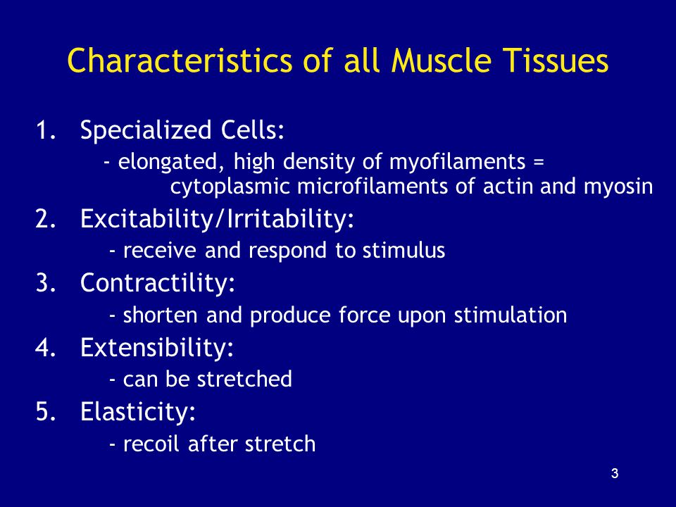 Characteristics of all Muscle Tissues
