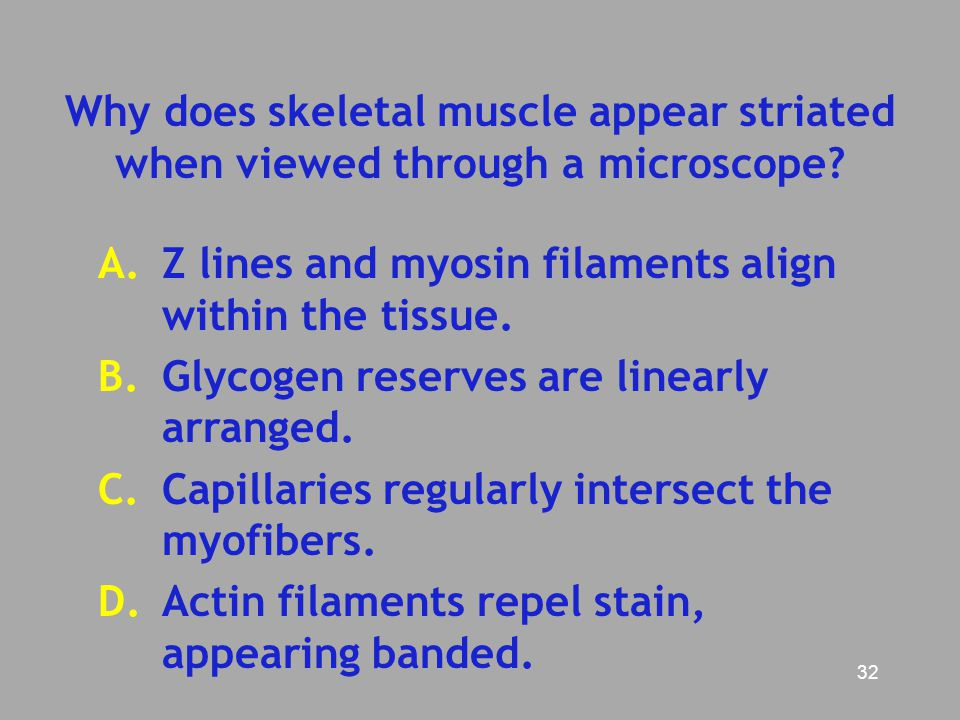 Why does skeletal muscle appear striated when viewed through a microscope