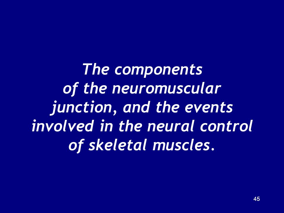 The components of the neuromuscular junction, and the events involved in the neural control of skeletal muscles.