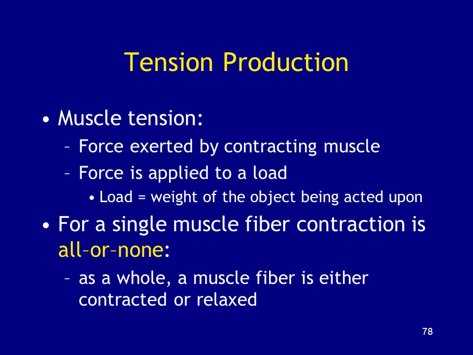 Tension Production Muscle tension: