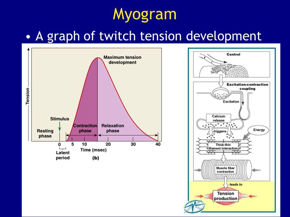 Myogram A graph of twitch tension development
