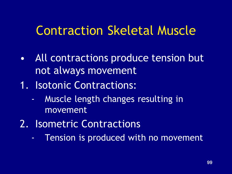 Contraction Skeletal Muscle