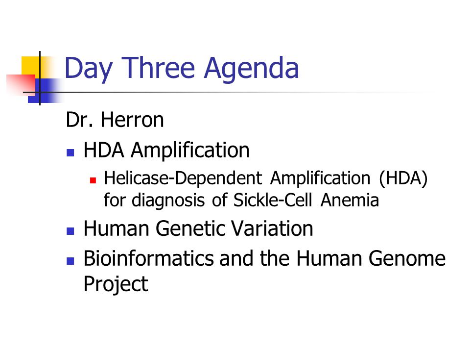Day Three Agenda Dr. Herron HDA Amplification Human Genetic Variation