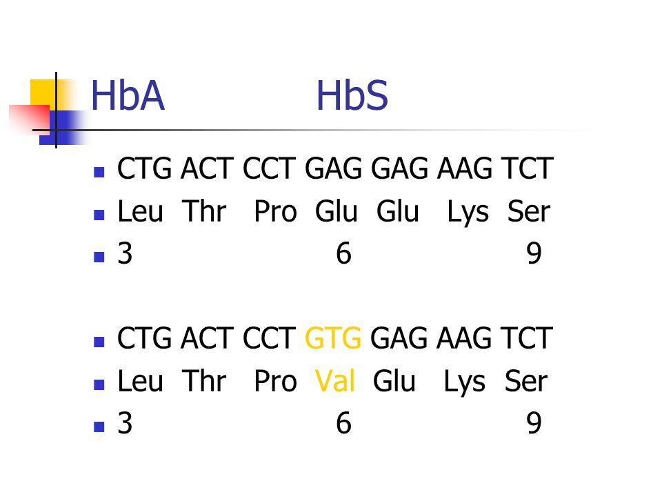 HbA HbS CTG ACT CCT GAG GAG AAG TCT Leu Thr Pro Glu Glu Lys Ser 3 6 9