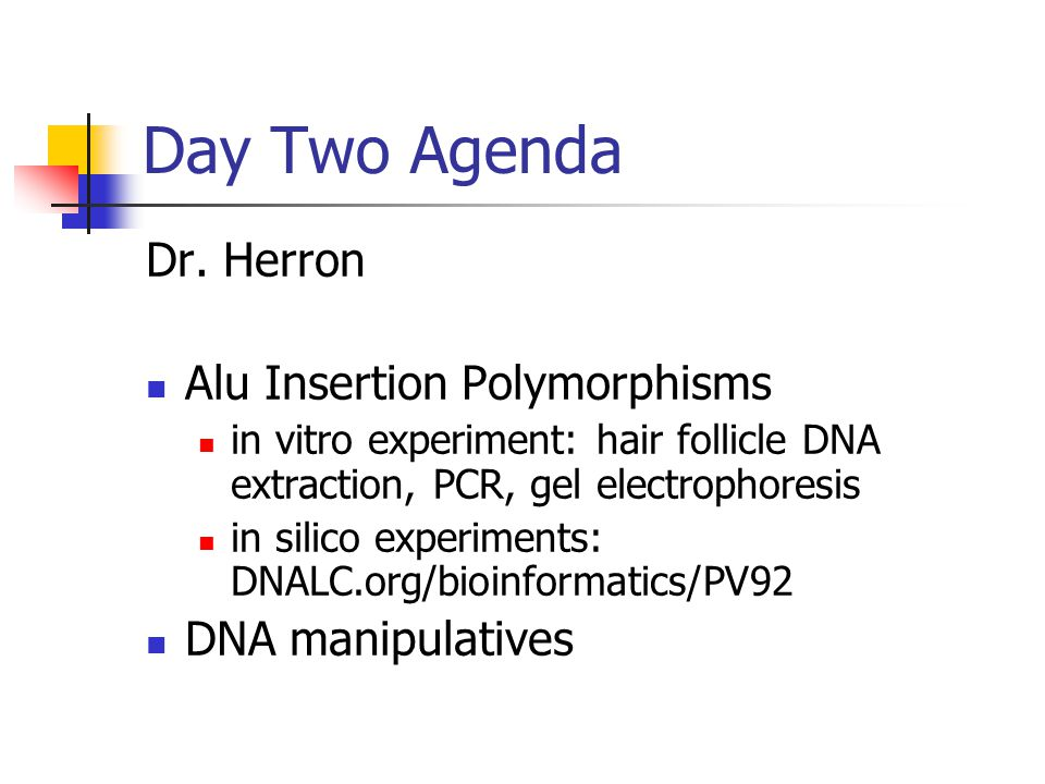 Day Two Agenda Dr. Herron Alu Insertion Polymorphisms