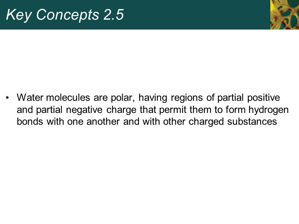Key Concepts 2.5