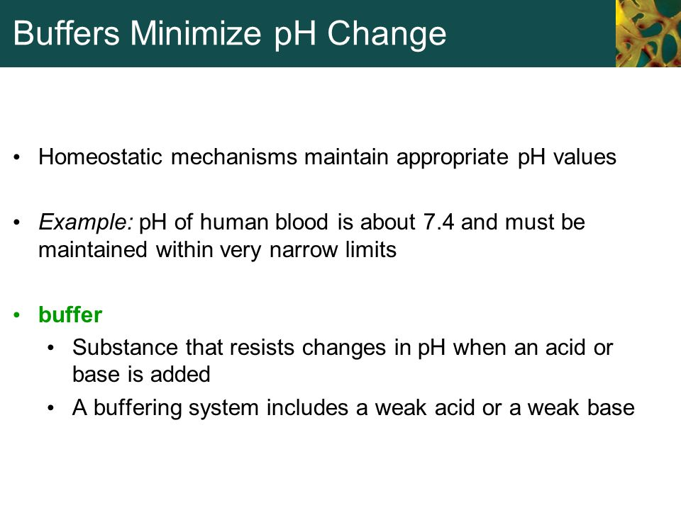 Buffers Minimize pH Change