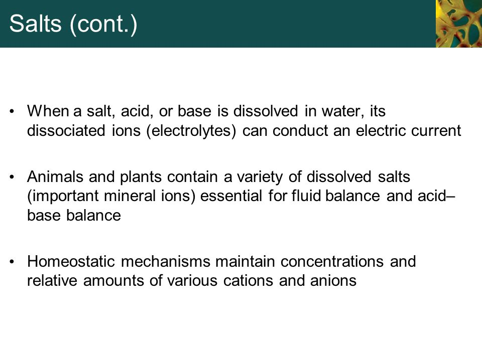 Salts (cont.) When a salt, acid, or base is dissolved in water, its dissociated ions (electrolytes) can conduct an electric current.