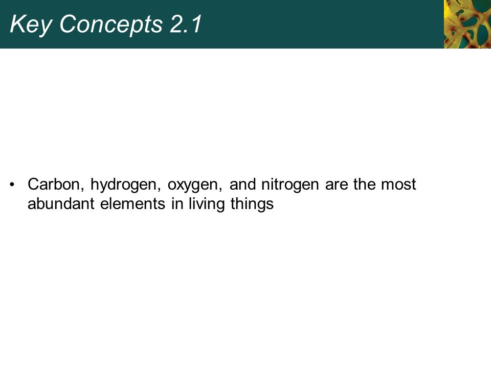 Key Concepts 2.1 Carbon, hydrogen, oxygen, and nitrogen are the most abundant elements in living things.