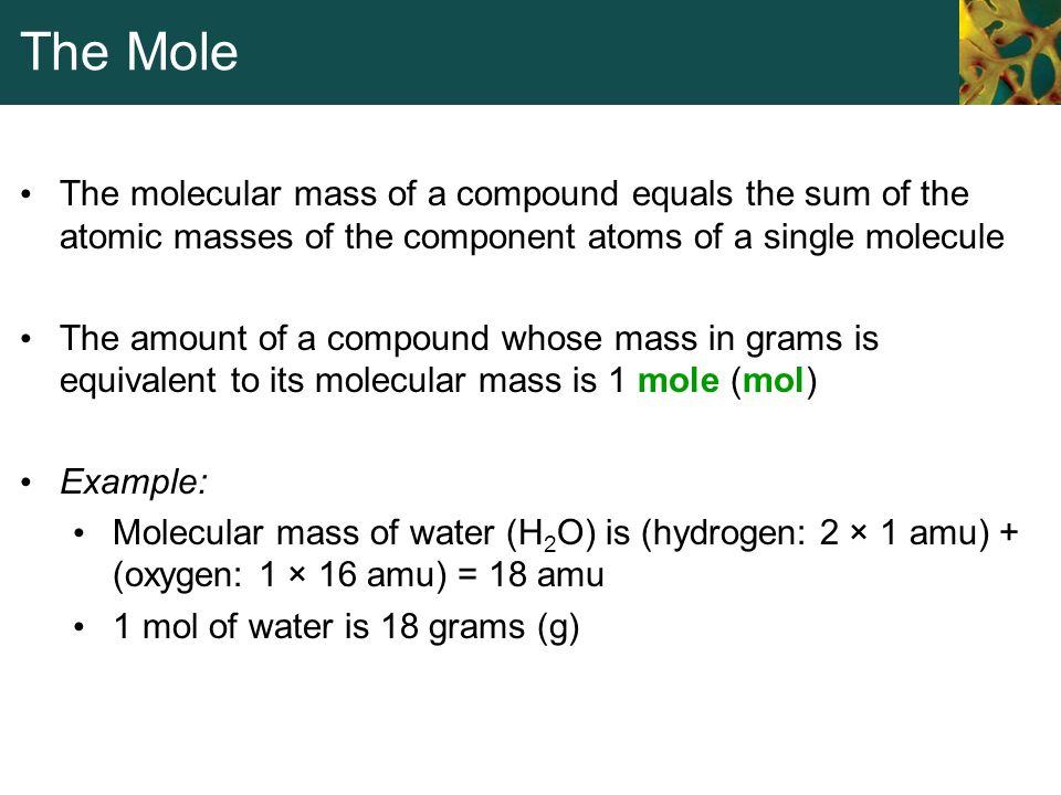 The Mole The molecular mass of a compound equals the sum of the atomic masses of the component atoms of a single molecule.