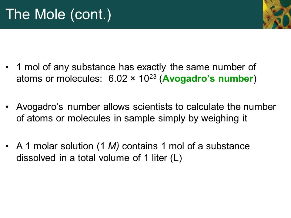 The Mole (cont.) 1 mol of any substance has exactly the same number of atoms or molecules: 6.02 × 1023 (Avogadro's number)