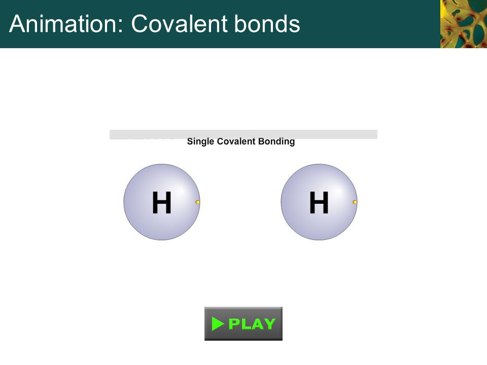 Animation: Covalent bonds